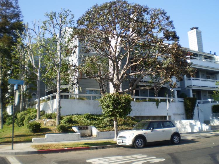 Orange County Property Management Houses Apartments In O